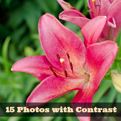 15 photos with contrast