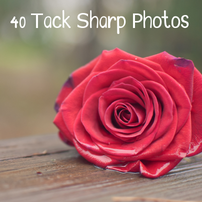 40 tack sharp photos