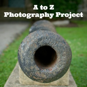 a-to-z-photography-project-6 (1)