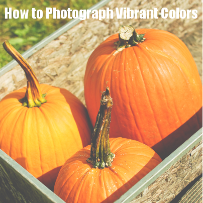 how to photograph vibrant colors #photography