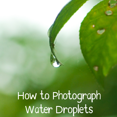 how to photograph water droplets