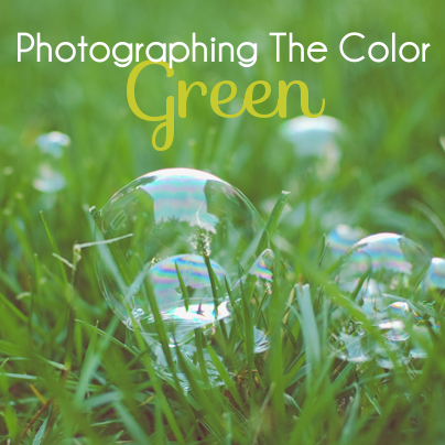 photographing the color green